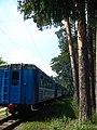Малая Московская железная дорога (35508787922).jpg