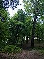 """Парк """"Кинь-Грусть"""" 01.jpg"""