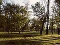 Ранок у весняному Міському Саду.jpg