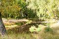 Река Уборть2.jpg