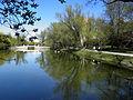 Сквер, озеро.JPG