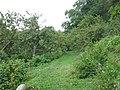 Фруктовый сад с огородами и водоемом между пристанью и каменным арочным мостом 02.JPG