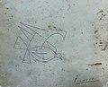 Хромолитография работы П. Пикассо с собственноручным автографом.jpg