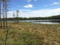 Челмозеро (Карелия).jpg