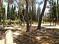 בית הקברות הבינלאומי של האגודה המשיחית השליחית (5857942256).jpg