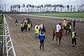 مسابقات اسب دوانی گنبد کاووس Horse racing In Iran- Gonbad-e Kavus 07.jpg