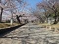 大村公園1 - panoramio.jpg