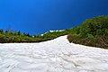 栂池自然園 - panoramio (15).jpg