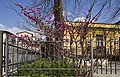 06034 Foligno, Province of Perugia, Italy - panoramio (24).jpg