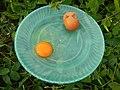 08726jfFilipino foods fruits Bulacan landmarksfvf 19.jpg