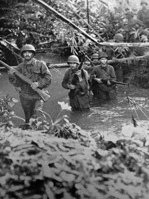 Battle of Munda Point - 172nd Infantry at Battle for Munda, 1943, WWII