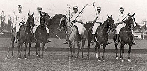 International Polo Cup - 1902 American team