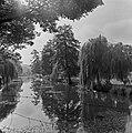 1967 l'étang du CNRZ-1-cliche Jean Weber.jpg