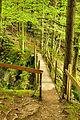 2010-08-08 08-22-54 Switzerland St. Gallen Nesslau Nesslau.jpg