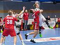 20170112 Handball AUT CZE 5615.jpg