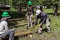 2017 Employee Work Day, Mountainaire (36715939875).jpg