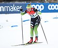 2019-01-12 Women's Qualification at the at FIS Cross-Country World Cup Dresden by Sandro Halank–349.jpg