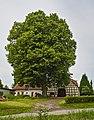 2019-06-16 ND Linde in Wolferdingsen (NRW) 01.jpg