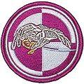 25 Brygada Kawalerii Powietrznej.jpg