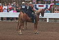 2 year old Three gaited stake (7714716484).jpg