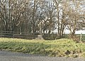 2nd Memorial near Airman's Corner, A360, near Larkhill and Stonehenge, Wiltshire - geograph.org.uk - 884670.jpg