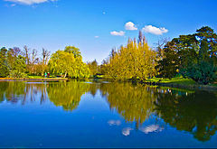 3 Beddington Park, London Borough of Sutton - Boating Lake.jpg