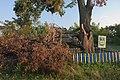 71-215-5012 Maksymovych Linden DSC 7579.jpg