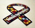 74 365 - autism awareness. (4146730230).jpg