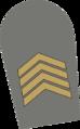 8 - Primeiro-sargento.png