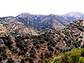 A@a agios theodoros area limassol cy - panoramio (1).jpg