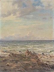 Kystparti med stenet strand