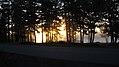 A Redbank Sunrise (8455536873).jpg