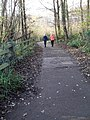 A Saturday afternoon stroll near Ladywood - geograph.org.uk - 1619141.jpg