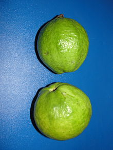 A aesthetic guava fruits.JPG