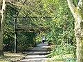 A footpath through Town Gardens, Swindon - geograph.org.uk - 784585.jpg
