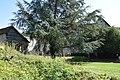 Abbaye de Mortemer 023.jpg
