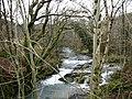 Afon Caws - geograph.org.uk - 750794.jpg