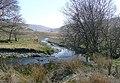 Afon Pysgotwr Fawr below Bryn Glas, Ceredigion - geograph.org.uk - 1236087.jpg