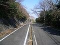 Aichi prefectural road 497-2008-2-b10.jpg