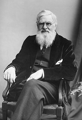 Alfred Russel Wallace in 1895 Foto