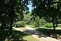 Allée bois de Boulogne 8.jpg