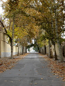 Alleys in autumn - Nishapur 23.JPG