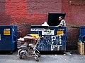 Alphonse, Doing Some Garbage Bin Recycling.jpg