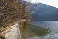 Altausseer See 78856 2014-11-15.JPG