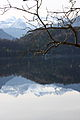 Altausseer See 78924 2014-11-15.JPG