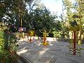 Amin al-Islami Park - Trees and Flowers - Nishapur 095.JPG