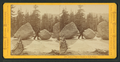 Ancient Glacier Channel at Lake Tenaya, by Muybridge, Eadweard, 1830-1904.png