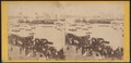 Animated scene. The shore crowded with spectators, and the water crowded with boats and sailing vessels, July 4th, 1860, by E. & H.T. Anthony (Firm).png