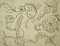Anoniem, Decoratief loofwerk - Feuillage décoratif, KBS-FRB (CVH 157).jpg