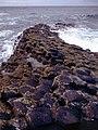 Antrim-Giant's Causeway-16-abtauchende Saeulenreihe-1989-gje.jpg